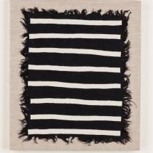 Black Zebra